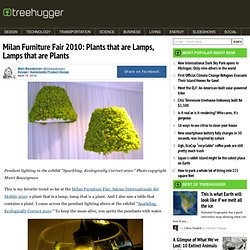 Milan Furniture Fair 2010: Plants that are Lamps, Lamps that are Plants