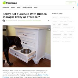Bailey Pet Furniture With Hidden Storage: Crazy or Practical?