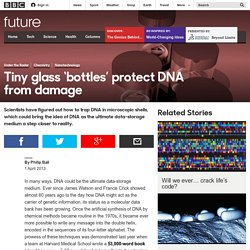 Science & Environment - Tiny glass 'bottles' protect DNA from damage