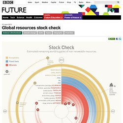 Future - Science & Environment - Global resources stock check