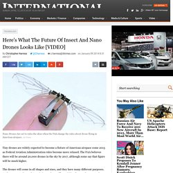 Here's What The Future Of Insect And Nano Drones Looks Like [VIDEO]