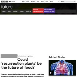Future - Could 'resurrection plants' be the future of food?