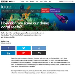 Science & Environment - How can we save our dying coral reefs?