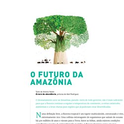 O futuro da Amazônia - Piseagrama