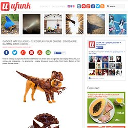 Gadget WTF du jour – 12 Cosplay pour chiens : Dinosaure, Batman, Dark Vador…
