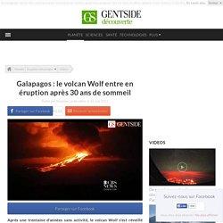 Galapagos : le volcan Wolf entre en éruption après 30 ans de sommeil