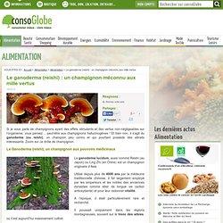 Le ganoderma (reishi) : un champignon méconnu aux mille vertus