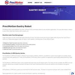 Gantry Robot