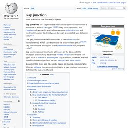 Gap junction - Wikipedia
