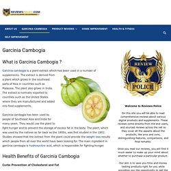 Garcinia Cambogia - Reviews Police