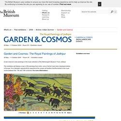 Garden and Cosmos
