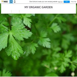 Website Template | My Organic Garden HTML