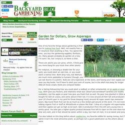 Garden for Dollars, Grow Asparagus