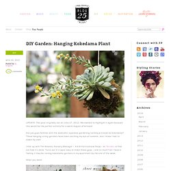 DIY Garden: Hanging Kokedama Plant