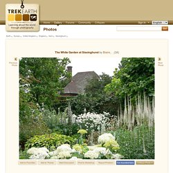 The White Garden at Sissinghurst, a photo from Kent, England