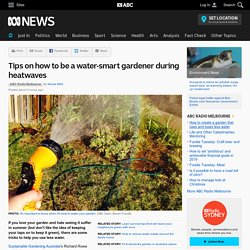Tips on how to be a water-smart gardener during heatwaves