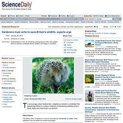 Gardeners must unite to save Britain's wildlife, experts urge