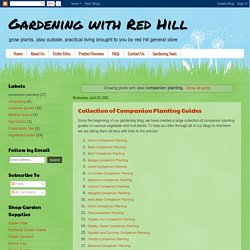 Gardening with Red Hill: companion planting
