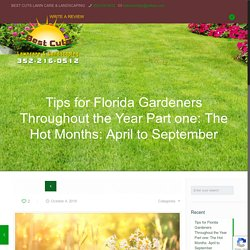 Gardening in Florida the Whole Year Round Part one: the hot months of summer, April through September