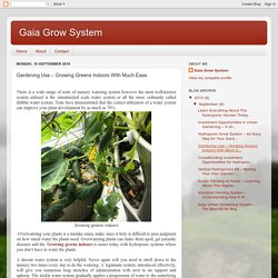 Gaia Grow System: Gardening Use – Growing Greens Indoors With Much Ease