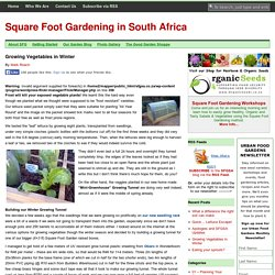 Square Foot Gardening in South Africa | Growing Vegetables in Winter