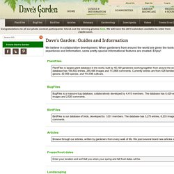 Gardening Help, Guides and Advice - Dave's Garden