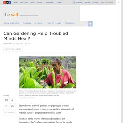 Can Gardening Help Troubled Minds Heal?