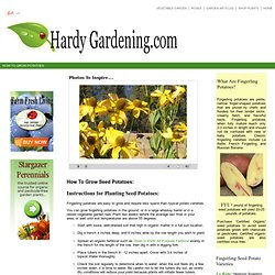 HARDY GARDENING: The Northern Gardeners Information Source