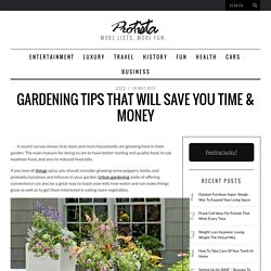 Gardening Tips That Will Save You Time & Money -  Protista * Great lists about everything!