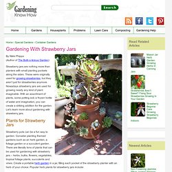 Gardening with Strawberry Jars