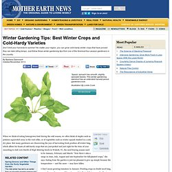 Winter Gardening Tips: Best Winter Crops and Cold-Hardy Varieties