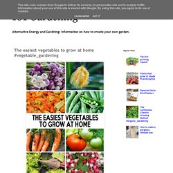 101 Gardening: The easiest vegetables to grow at home #vegetable_gardening
