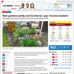 Rain gardens pretty and functional, says Toronto resident - Toronto