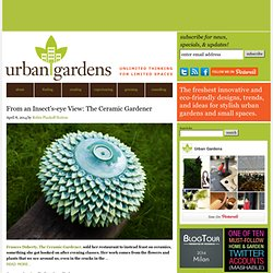 Urban Gardens | Unlimited Thinking For Limited Spaces