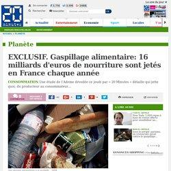 20MINUTES 26/05/16 EXCLUSIF. Gaspillage alimentaire: 16 milliards d'euros de nourriture sont jetés en France chaque année