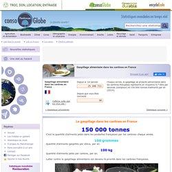 Gaspillage alimentaire dans les cantines en France