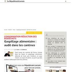 REPUBLICAIN LORRAIN 13/12/13 Gaspillage alimentaire : audit dans les cantines