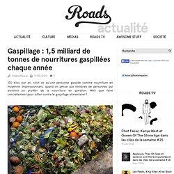 Gaspillage : 1,5 milliard de tonnes de nourritures gaspillées chaque année