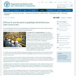 FAO 21/10/13 Effectuer le suivi des pertes et gaspillages alimentaires pour lutter contre la faim