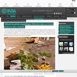 INRA 08/06/16 Réduire les pertes et gaspillages d'aliments dans un monde de plus en plus urbanisé