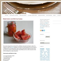 Gastronomers Guide: Watermelon and Mint Ice Cubes