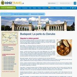 Gastronomie à Budapest : Dégustez le célèbre goulash - Logitravel.fr