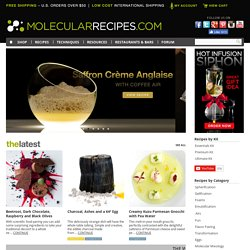 Molecular Gastronomy Recipes
