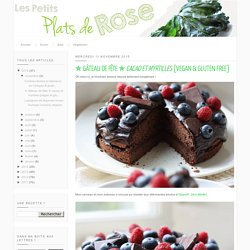 ✯ Gâteau de fête ✯ cacao et myrtilles [vegan & gluten free]