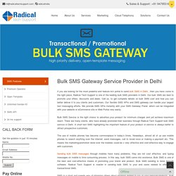 Bulk SMS Service Provider in Delhi - Radical Tech Support