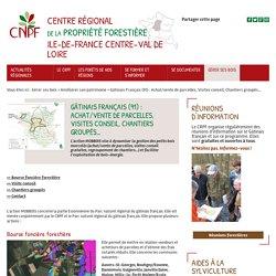 Gâtinais Français (91) : Achat/vente de parcelles, Visites conseil, Chantiers groupés… - CRPF Ile-de-France-Centre-Val-de-Loire