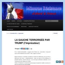 LA GAUCHE TERRORISÉE PAR TRUMP (l'Imprécateur)