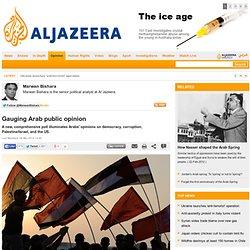 Gauging Arab public opinion