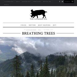 Gavin Van Horn, Breathing Trees - The Learned Pig
