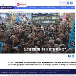 Gaz de schiste : où en est la France ? - LCI